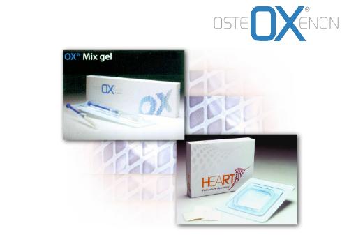 Bioteck osteoxenon equine bone substitute